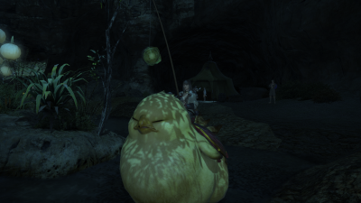 FFXIV-FatChocoboClose.png